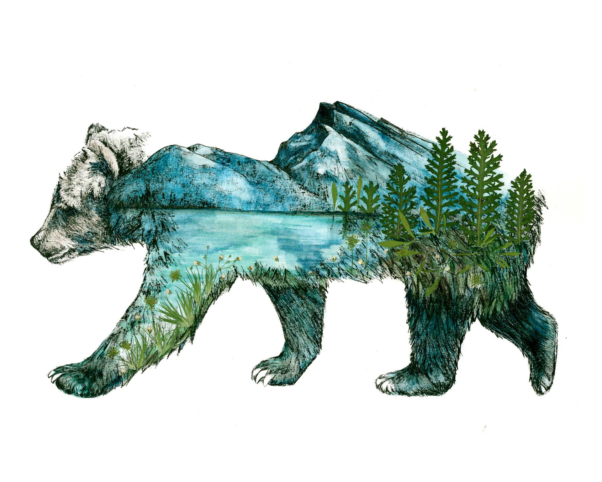 Rundle Bear