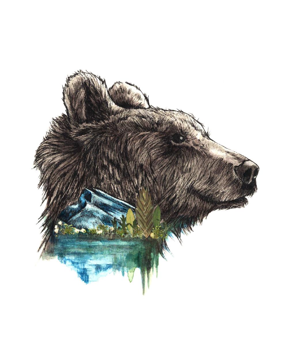Rundle Bear 2