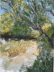 Tree by Wallkill