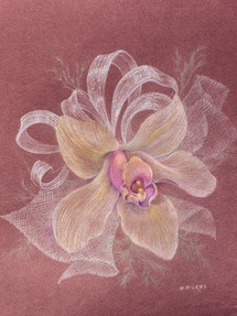 Orchid Series, No. 1 Corsage for the Wedding Colored Pencil 1996