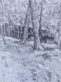 Abandoned Cabin at Harriman Pencil Sketch 1992