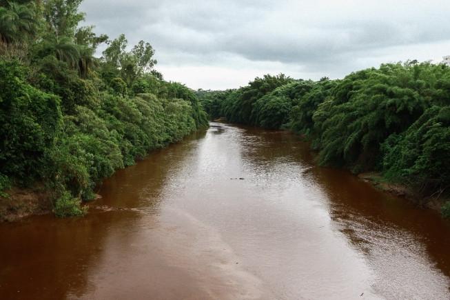 Água do Rio Paraopeba apresenta riscos à saúde humana e animal, alerta Estado