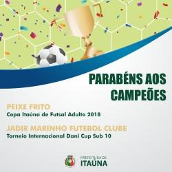 Peixe Frito conquista o título da Copa Itaúna de Futsal Adulto 2018