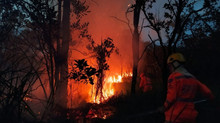 Incêndio é controlado na Mata do Noé, em Divinópolis