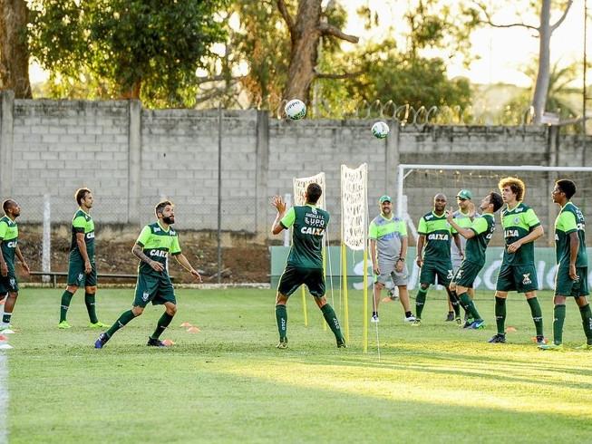 Nem Papão, nem Vozão: Coelho busca seis pontos nos dois próximos duelos no Horto