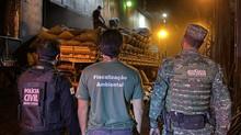 Lastro III: operação de combate ao comércio irregular de carvão é realizada em Divinópolis