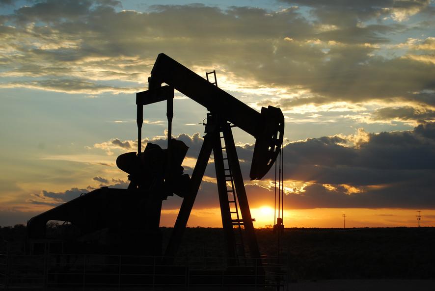 קידום אורגני - כל אתר הוא באר נפט