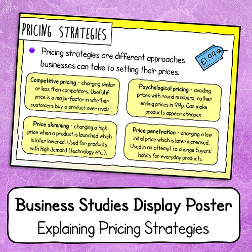 Explaining Pricing Strategies Poster / Handout