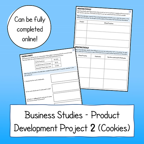 Developing a Product Idea Project 2