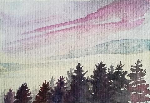 "Carte postale A6 ""Forest sunset"""
