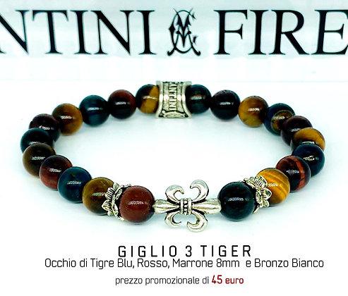 GIGLIO 3 TIGER