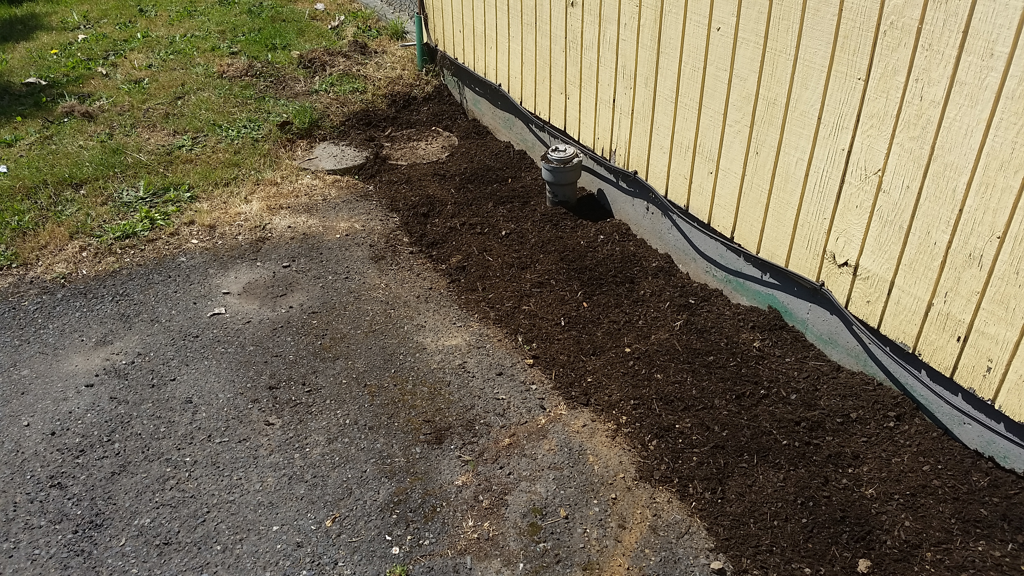 Ground cover after