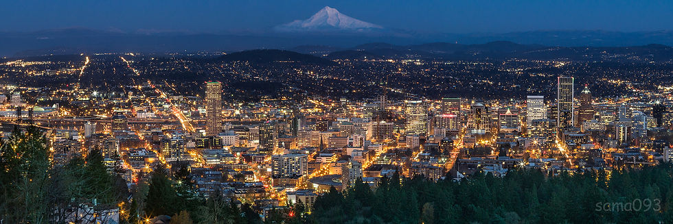 View Of The Portland Area