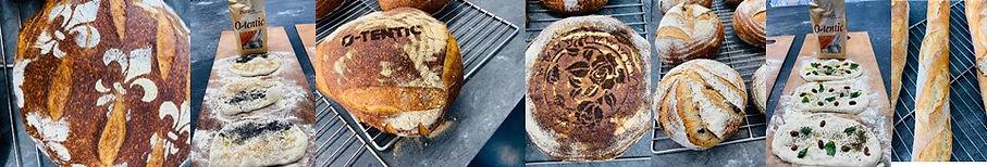 סדנת לחם.jpg