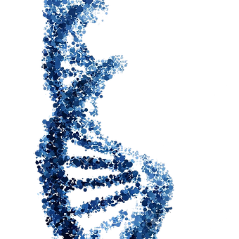 DNA-double-helix.png