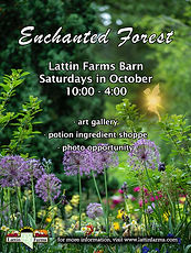 Lattin Farms Enchanted Forest