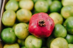 Wide Range of Organic Fruit and Veg