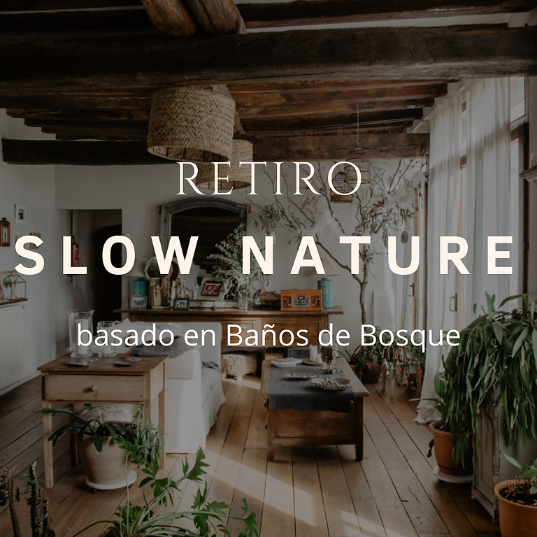 Retiro de Baños de Bosque SLOW NATURE