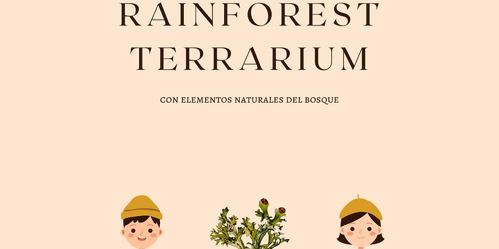 Rainforest Terrarium