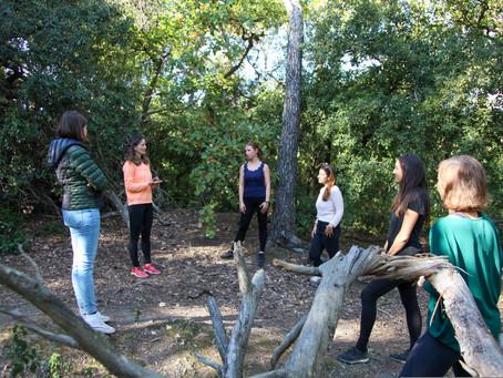 6 Consejos para realizar los Baños de Bosque por tu cuenta