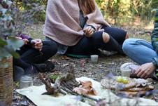 Terapia Forestal en Barcelona