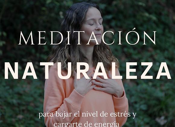 Meditación para realizar en la naturaleza