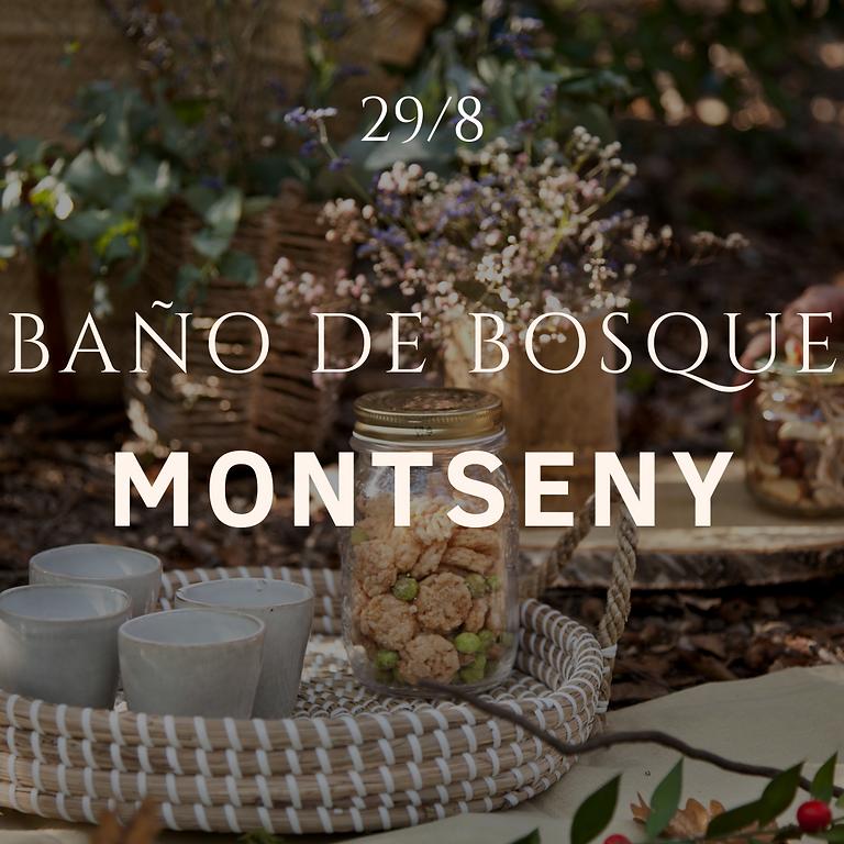 Baño de Bosque Montseny