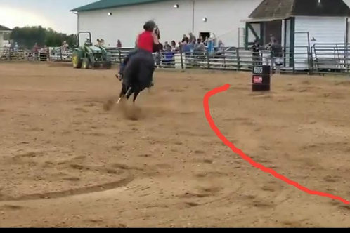 Barrel Racing Run Review