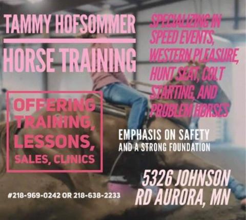 Tammy Hofsommer Horse Training