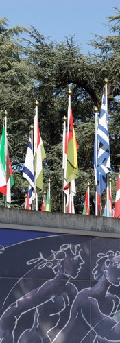 Flags in front of the UN office in Geneva