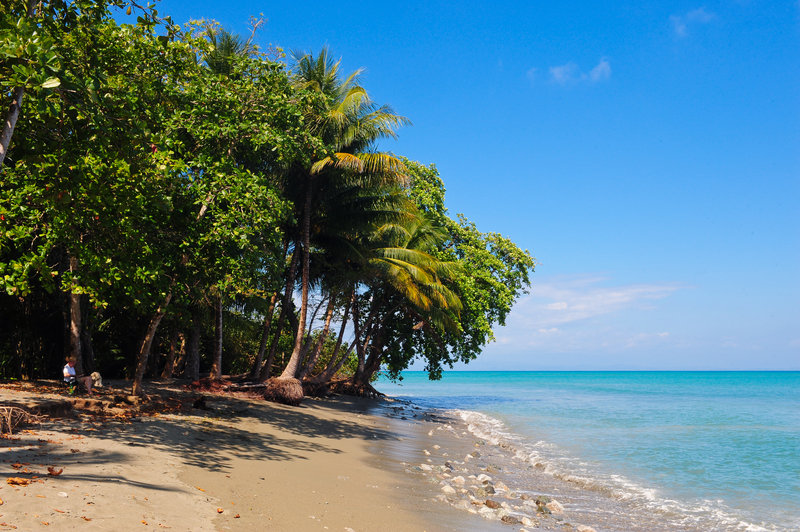 Puerto Jimenez Beach