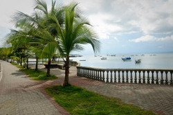 Puerto Jimenez beachfront