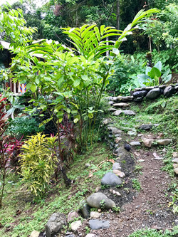 Path to Pool and Cabina