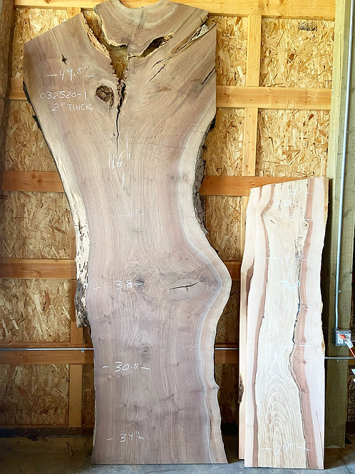 032520-1 Oregon Black Walnut