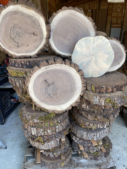 Wood Rounds Varied Species and Sizes