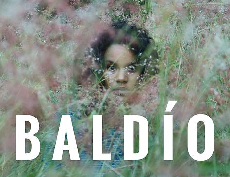 baldio website.png
