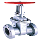 Stainless Steel Flanged Gate Valve (PN16 –20° C+ 450°C )