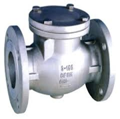 Stainless Steel Flanged Swing Check Valve (PN16—0° C+450°C)