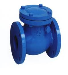 Cast Iron Swing Check Valve WRAS Appoved (PN16–10°C+70°C EDPM covered)