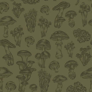 Mushroom Concept Print