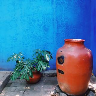 Museo Casa Estudio Diego Rivera y Frida Kahlo