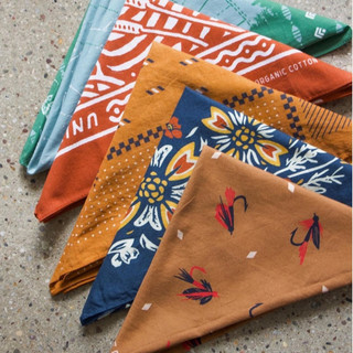 Let's Fly and Floral Bandana
