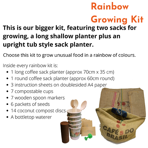 Rainbow Food Kit