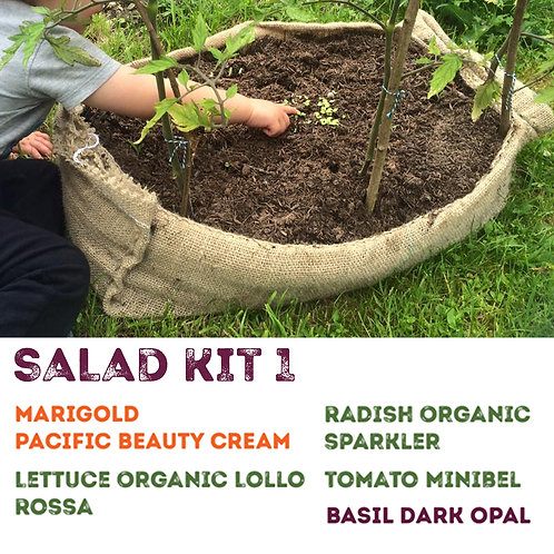 Salad Growing Kit One