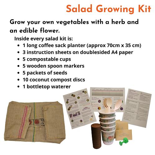 Salad Growing Kit