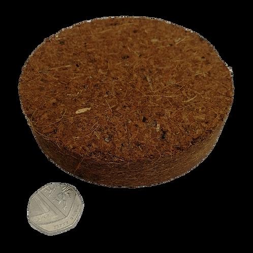 Giant Coconut Coir Compost Discs