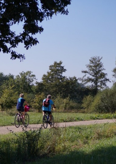 Escapade en vélo sur la voie verte
