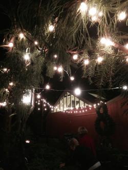 Holiday Market Lights