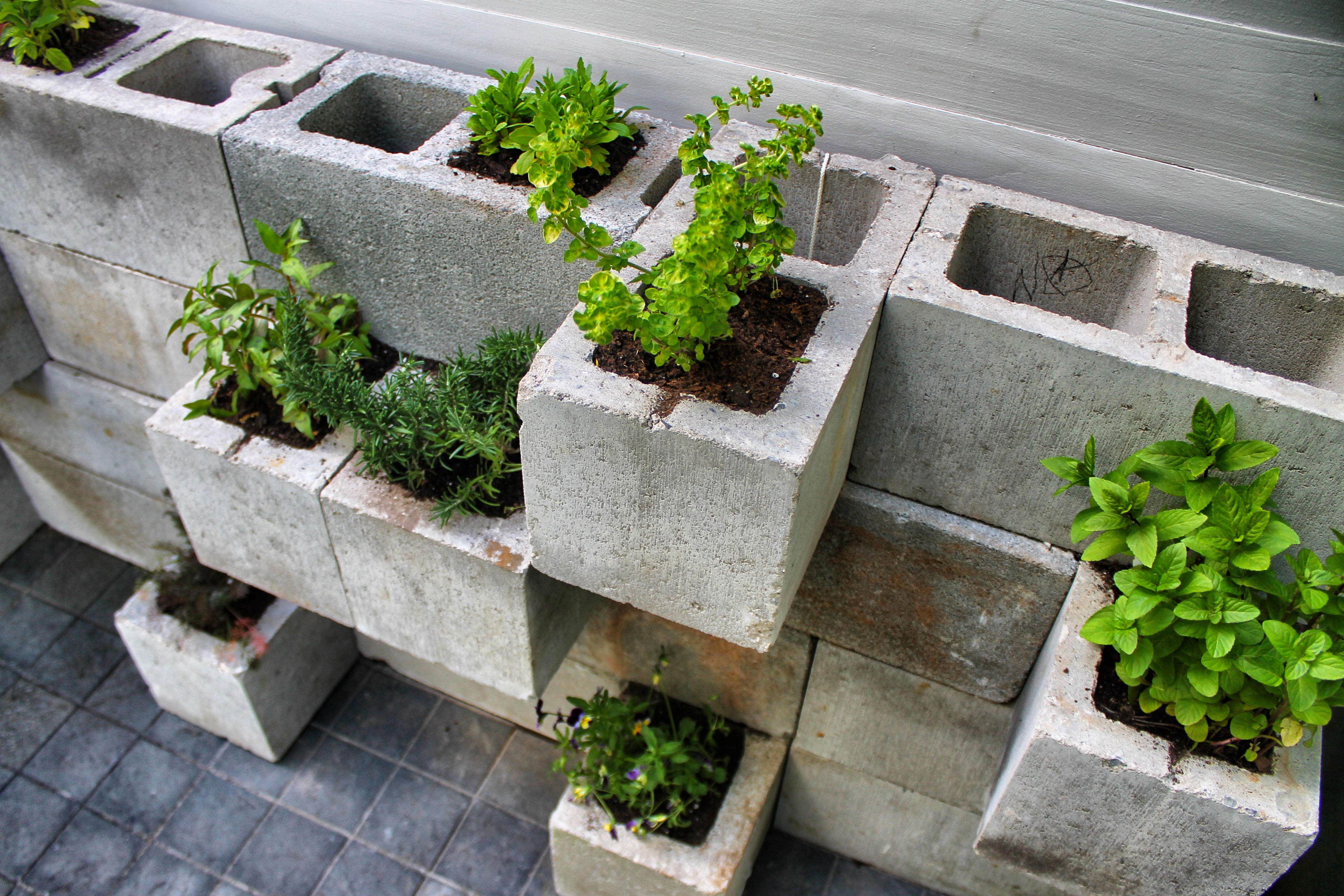 Cinderblock herb planter