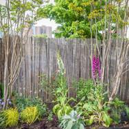 South Street Pop Up Garden
